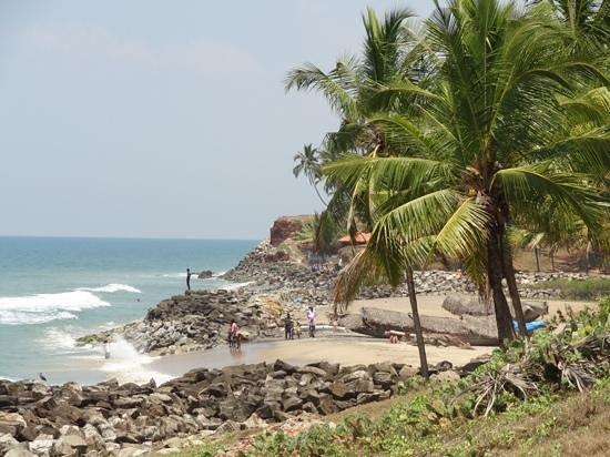 Oasis Beach Resort: la petite plage a 5 minutes du oasis beach