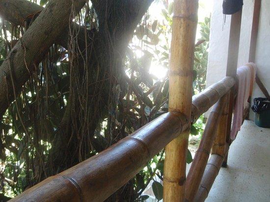Kon - Tiki Hostal: vista desde el pasillo