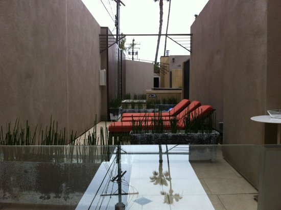14 West: Rear Terrace