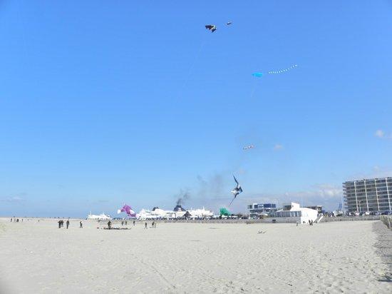 Calais Beach: plage de Calais..ses cerf-volants
