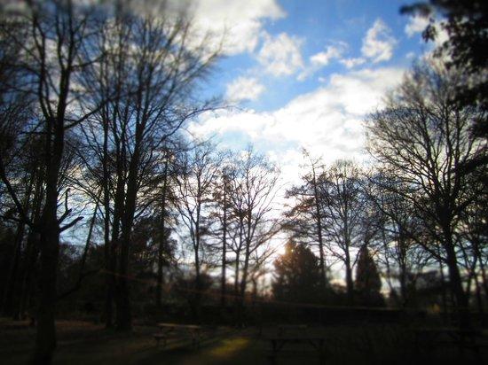 YHA Holmbury St Marys Surrey Hills: outdoors
