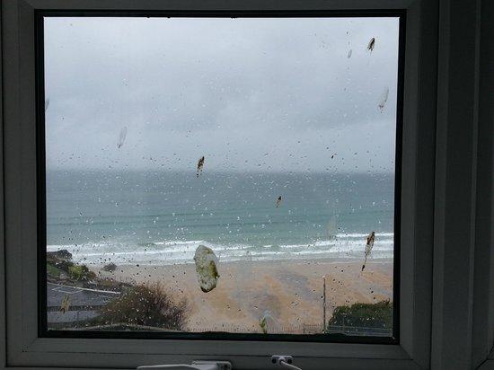 Legacy Hotel Victoria - Newquay: Bedroom window - Bird Poo