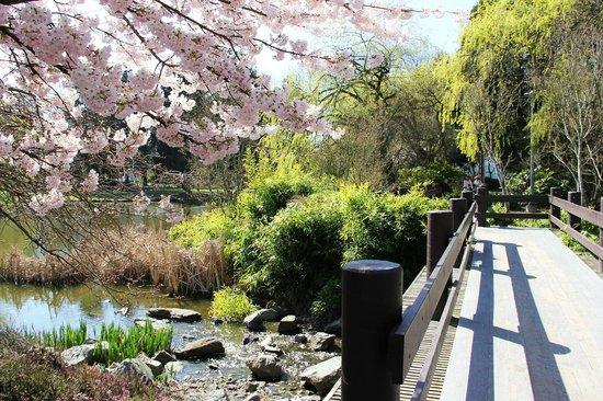 Minoru Park