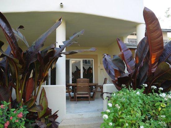 Hotel Alisei : ENTRADA y TERRAZA AL APARTAMENTO
