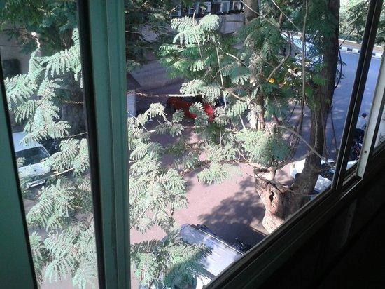 Paradise Inn : window view