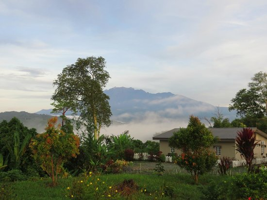 Sabah Tea Garden: Mt Kinabalu from outside the cottages