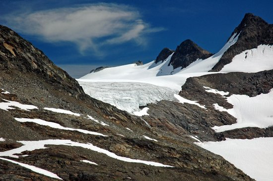 Selkirk Mountain Experience Lodge: Durrand Glacier: Many glaciers