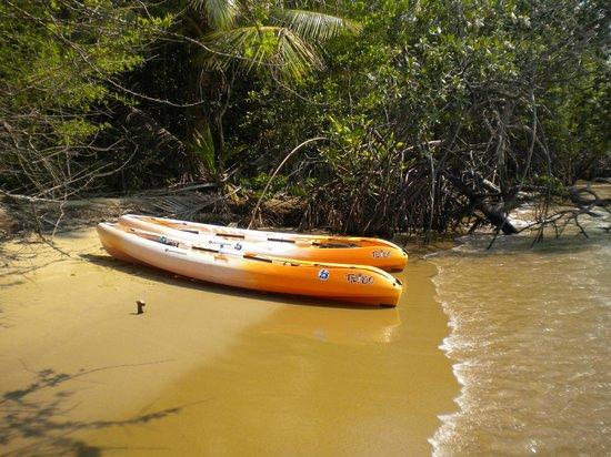 Sabal Beach: kayaks for our use and enjoyment