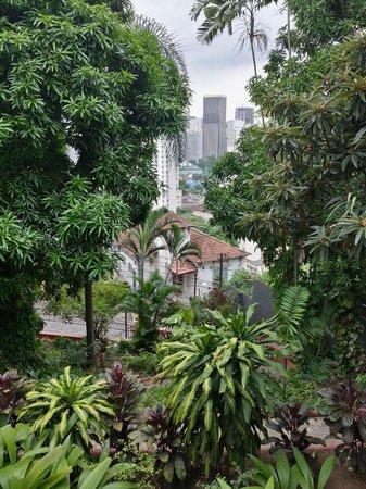 Bossa in Rio Hostel: Front garden
