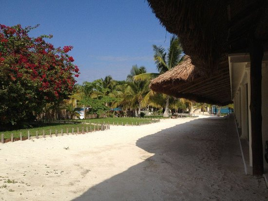 El Paraiso Tulum: view from reception