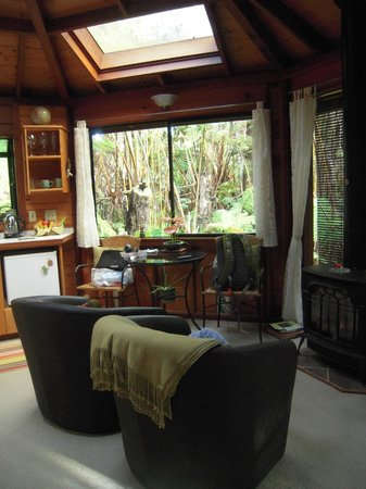 Volcano Rainforest Retreat: Our Room
