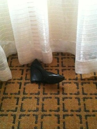 Kimpton Hotel Vintage Portland: Requested a room w/o constant water sound...got a room with a shoe.