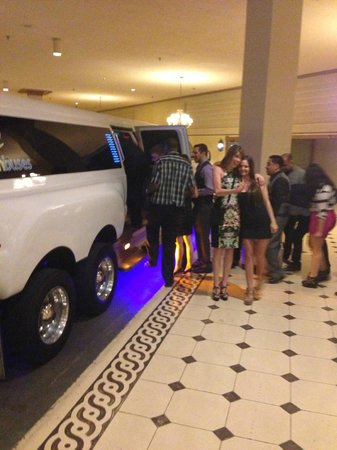 Nite Tours : Sweet Party Bus!!