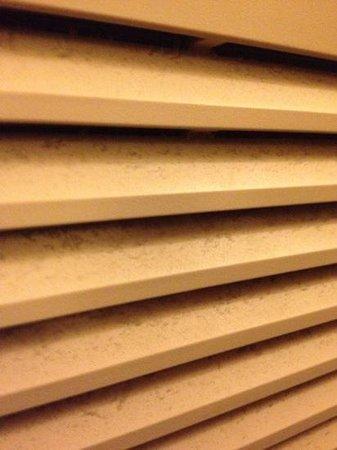 Shawnee, Канзас: dust on the air conditioner