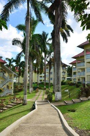 Mystic Ridge Resort: Resort Landscape