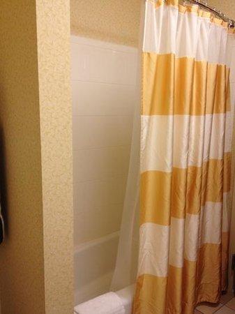 Fairfield Inn & Suites Burley: bathroom