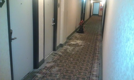Comfort Inn Arlington Boulevard: Hallway carpets that were never cleaned after big fire...