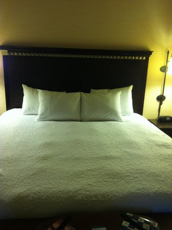 Hampton Inn & Suites Staten Island: Clean Room, lots of pillows