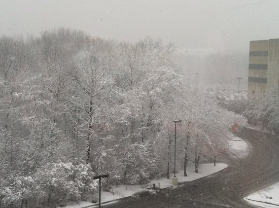 Hampton Inn & Suites Staten Island: From room during Blizzard Advisory