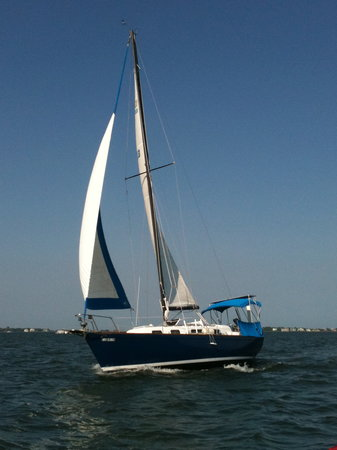 Charleston Sail - Harbor Yacht Tours