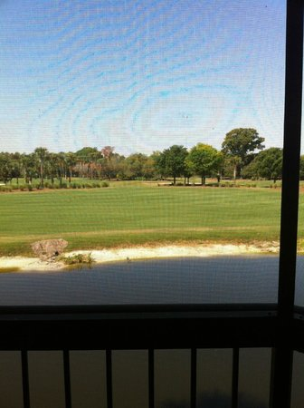 Marriott's Sabal Palms: From the porch