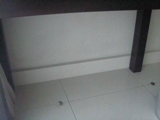 Tanoa Tusitala Hotel: Ants