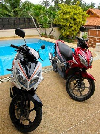 Phuket Gay Homestay - Neramit Hill: Automatic motorbikes for rent