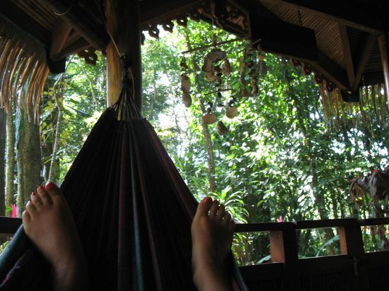 Korrigan Lodge: Relaxing at our beautiful little jungle cabin.