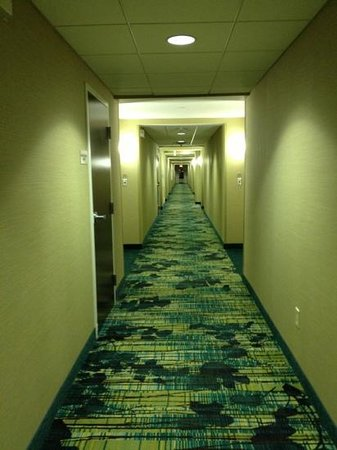 SpringHill Suites Billings: hallway