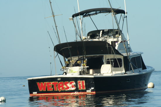 Wetass II Sportfishing