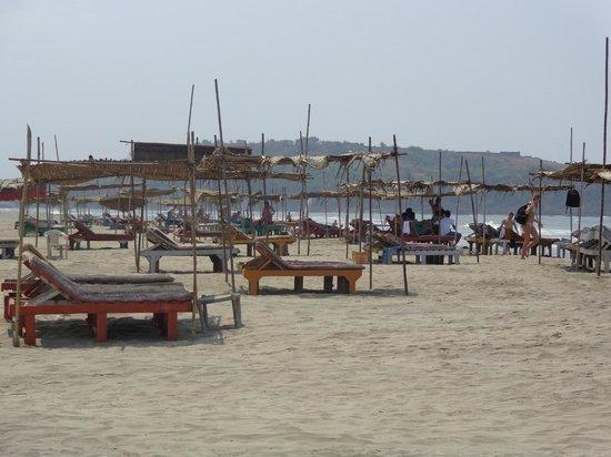 Morjim: The beach shacks