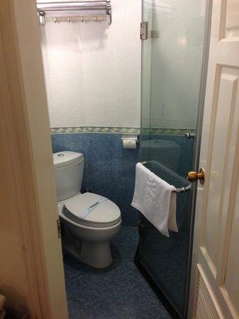 Art Hotel: Toilet