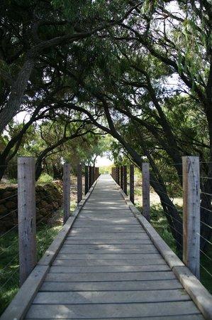 Pullman Bunker Bay Resort Margaret River Region: Beach boardwalk