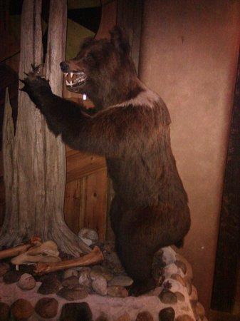 Viikinkiravintola Harald: bear