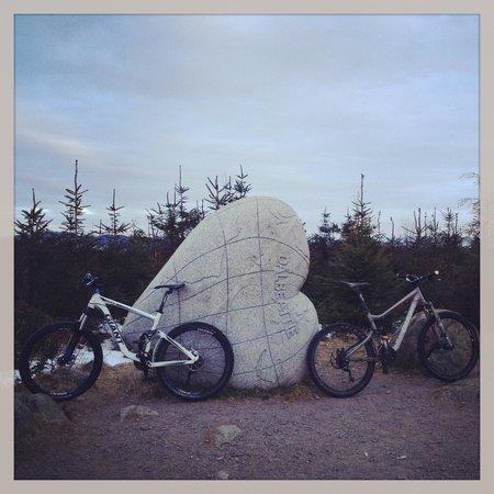 Gorsebank Camping Village: Fantastic MTB Trails