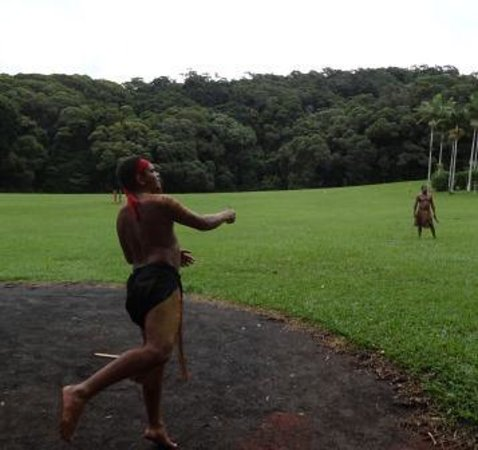 Parque Natural Rainforestation: throwing boomerangs