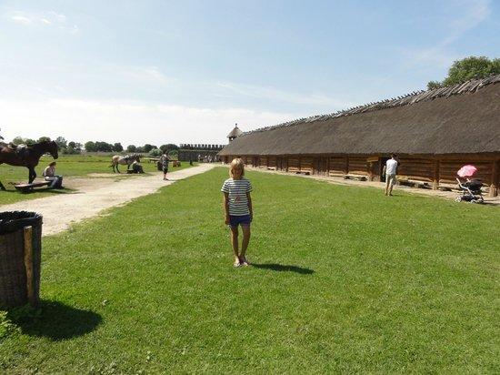 Muzeum Archeologiczne w Biskupinie: Widok na chaty