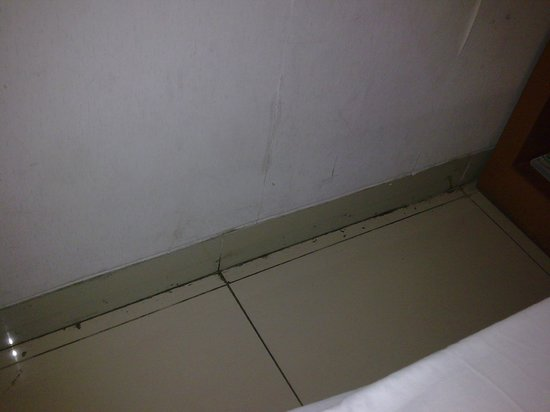Image Hotel & Resto: Floor of the room