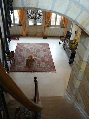 Chateau Lavergne-Dulong - Chambres d'hotes: The hall (Lulu on the carpet)