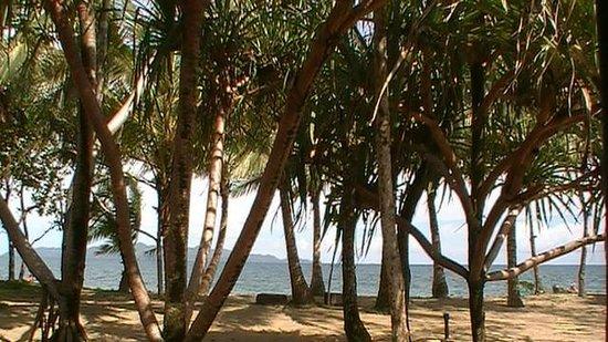 Uprising Beach Resort: view from bure