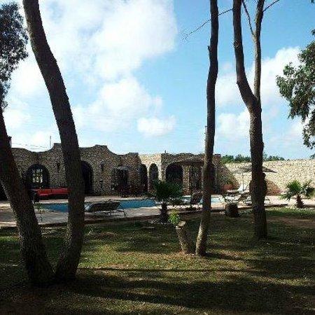 Villa Amaryllis : Vue piscine