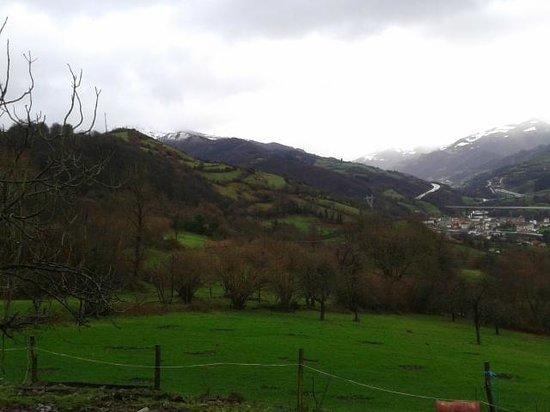 Ecocorneyana: vistas