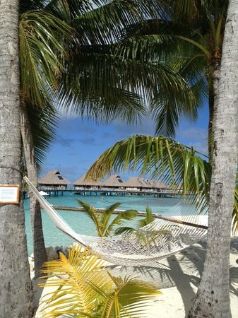 Conrad Bora Bora Nui: View from the pool area