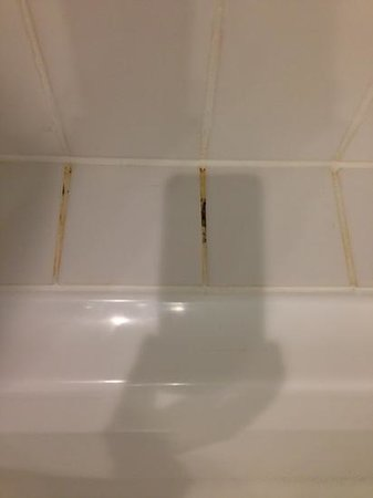Rendezvous Hotel Perth Scarborough: mould in bathroom