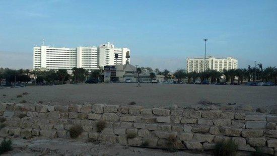 David Dead Sea Resort & Spa: Vista de los hoteles de la zona