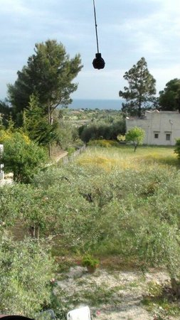 Uliveto Guest House: Uliveto house, view from top floor