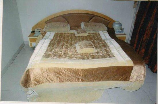 Hotel Balwas: Super Deluxe Room