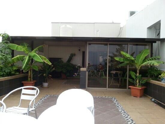 Palm View Tourist Guest House : На грыше можно посидеть.
