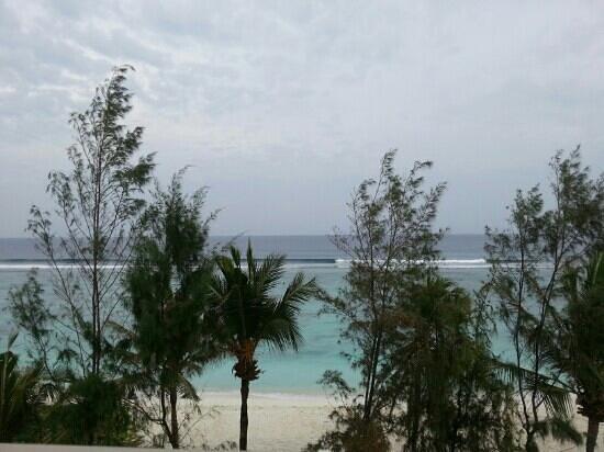 Palm View Tourist Guest House : Вид с крыши.