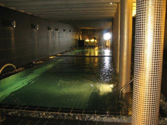 Hotel Albrecht: piscine